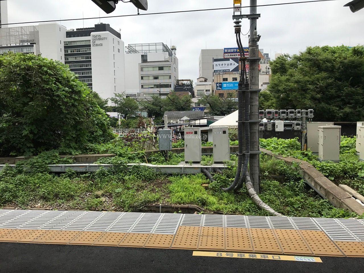堀の向こうに東京理科大