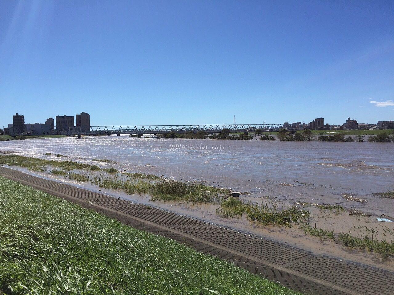 市川側より下流方向を撮影